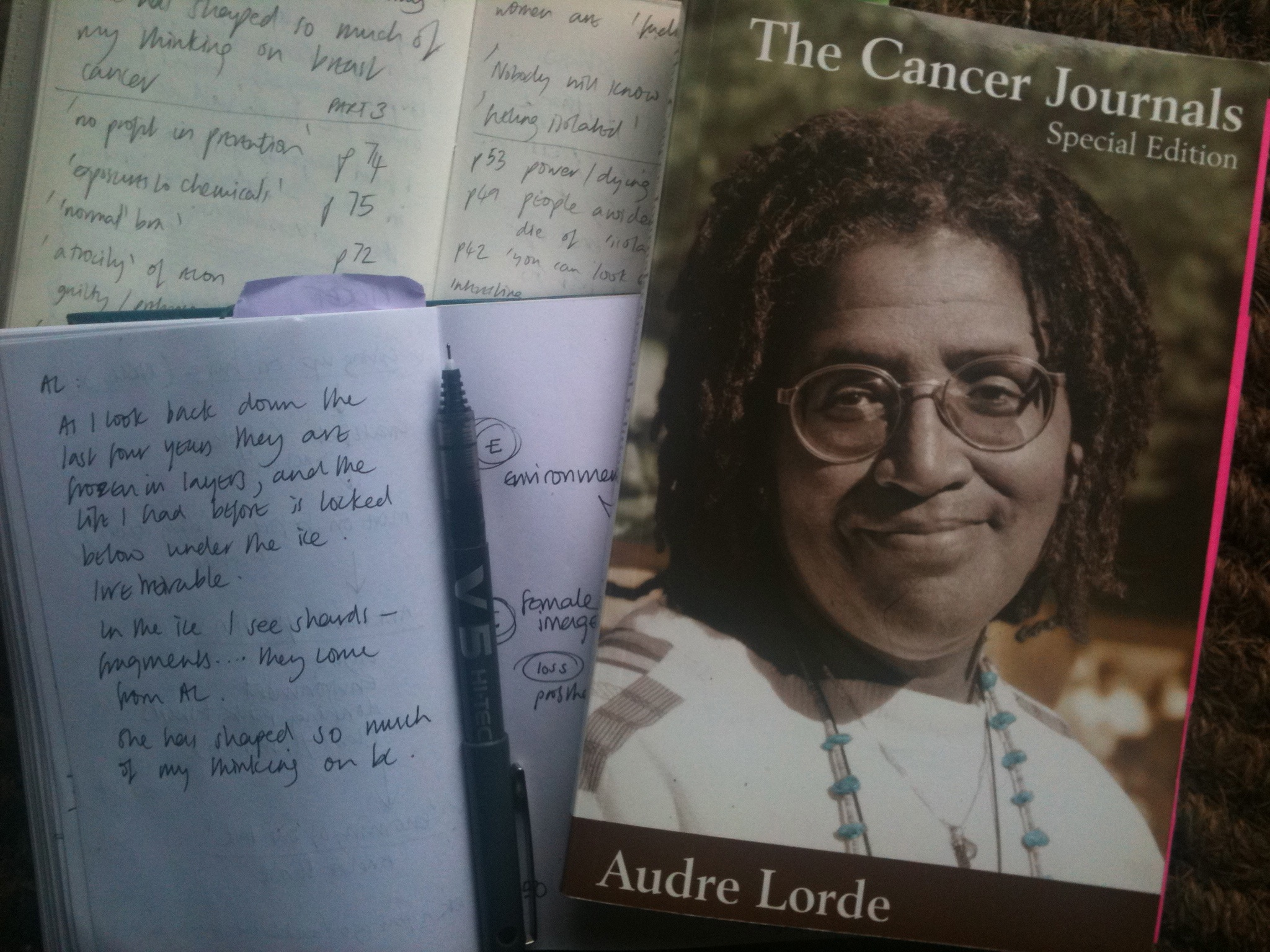 The Cancer Journals - Audre Lorde - Google Books
